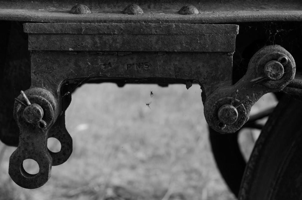 Del av järnvägsvagn vid Tyskmagasinen Luleå. Spindlarna verkade då trivas i denna miljö...