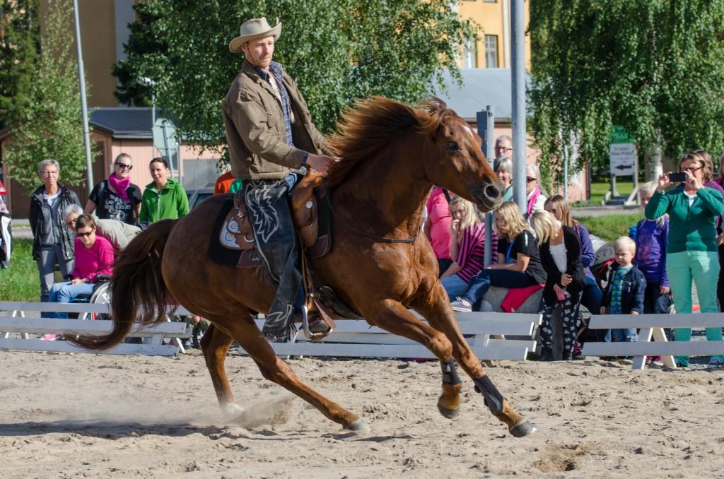 Hästfesten i Boden 2014. Westernridning, såg roligt ut trots min misstro mot hästar...