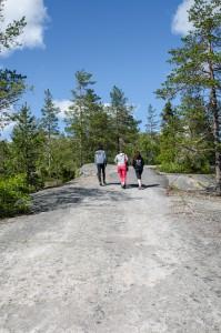 På väg mot toppen på Luppioberget.