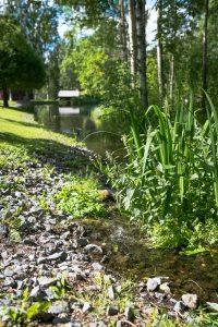 Mysiga små bäckar mellan dammarna.