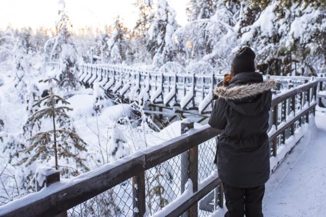 Storforsen i vinterskrud, vackrare än någonsin.