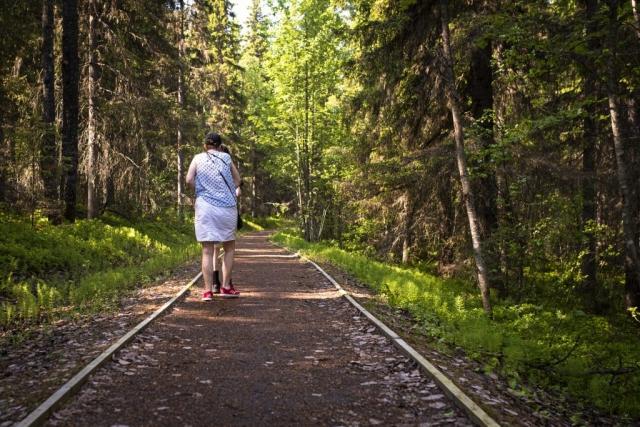 Väl utmärkt promenadstid, eller snarare väg gjorde promenaden till Gammelstadsvikens fågeltorn lätt att gå!