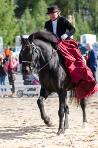 Dressyrridning på Hästfesten i Boden.
