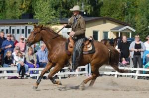 Westernridning på Hästfesten i Boden.