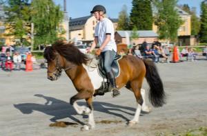 Bodens Hästfest 2014. Islandshästens gångarter.
