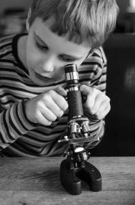 Simon undersöker en död fluga i mikroskopet.