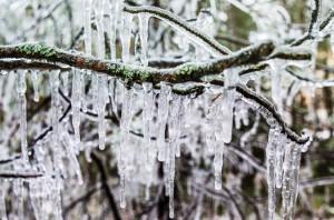 När jag först besökte  Ice Musics hall möttes jag av naturens egna vindspel. Det ramade in platsen fint!