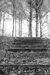 En trappa mitt i allt. Stairway to heaven, eller bara halvvsägs?