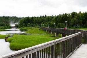 Storforsen. Nu har de byggt en fin bro från hotellet så man enkelt når fallet.