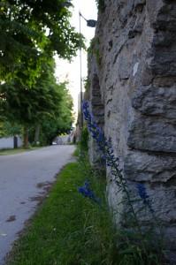 Visby.