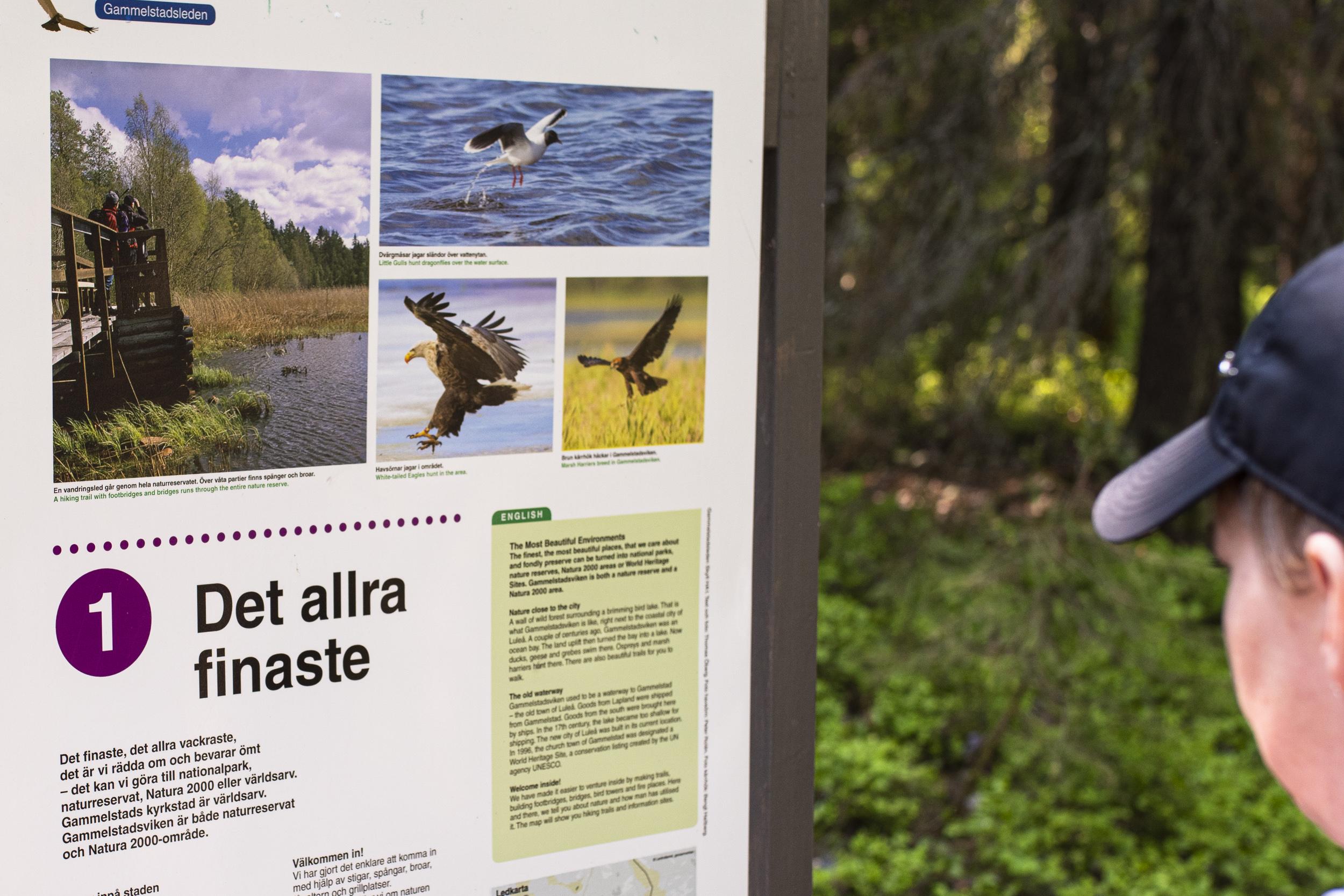 Dags för en prommis till Gammelstadsvikens naturreservat.