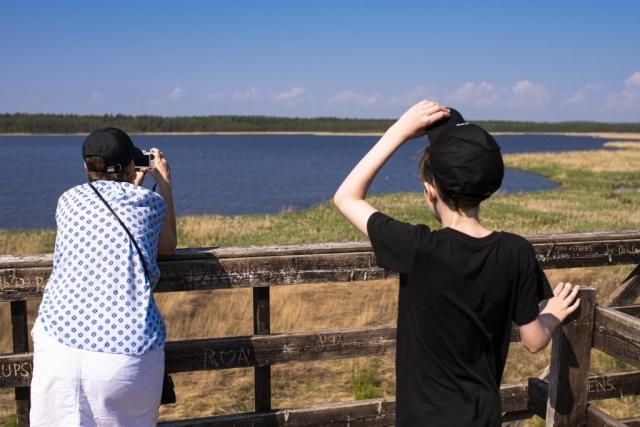 Väl framme såg vi massor av fåglar, tyvärr då mest fiskmåsar, eller var det skrattmås?
