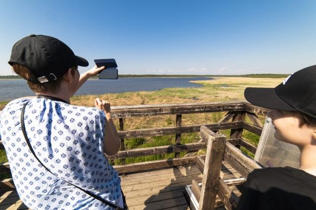 Härlig utsikt från fågeltornet i Gammelstadsviken.