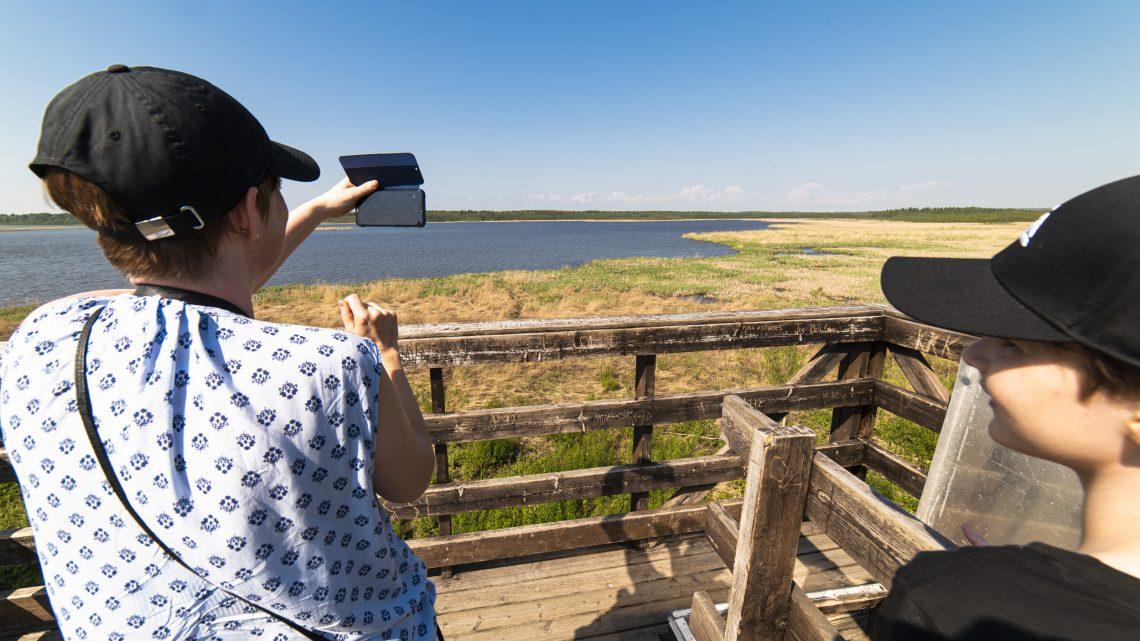 Avkopplande besök till Gammelstadsvikens naturreservat