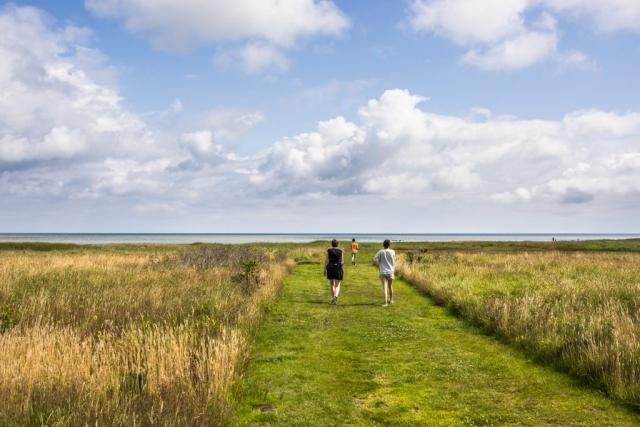 Dags för en liten promenad ned till stranden.