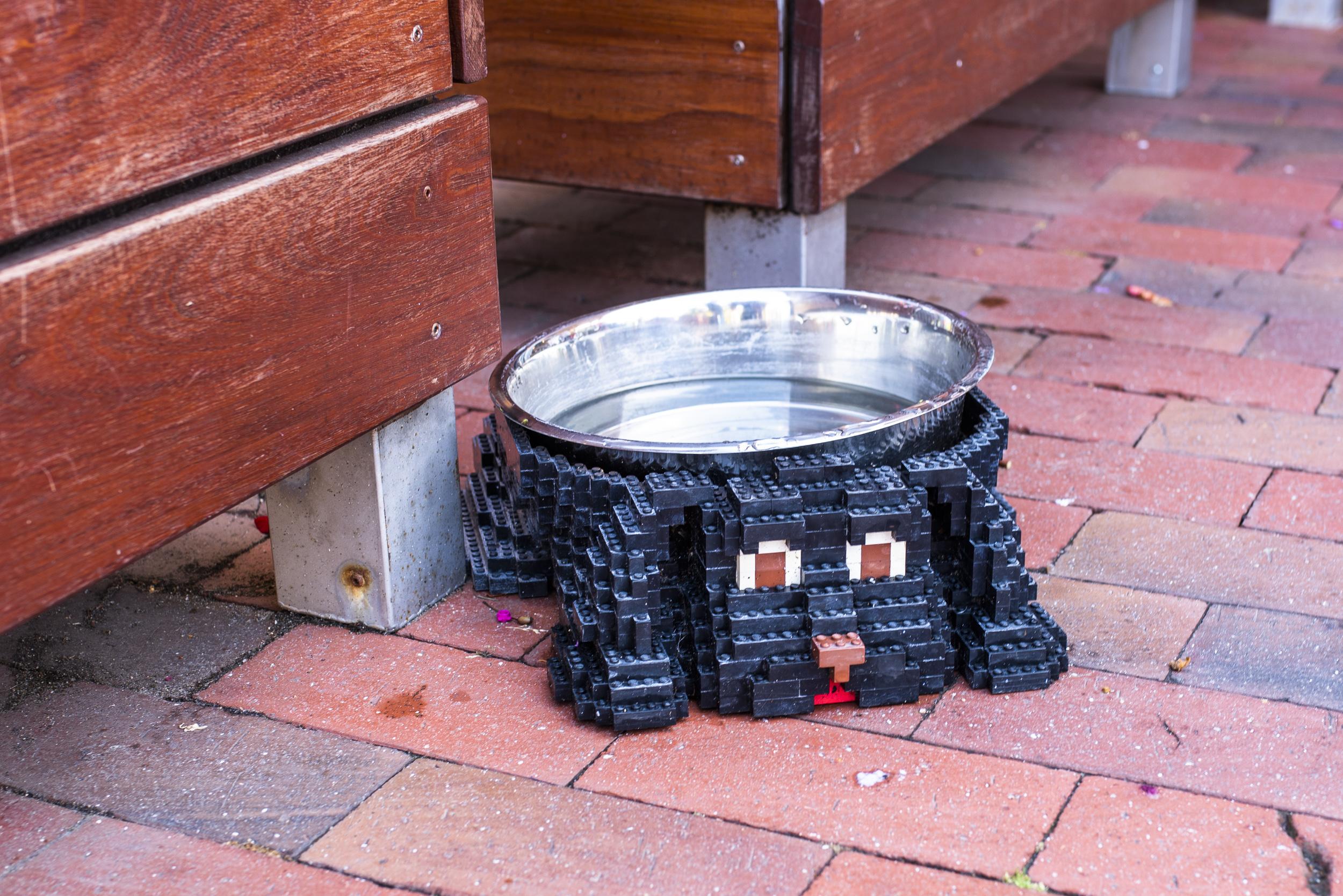 Legolands personal tänker på våra små kompisar också!