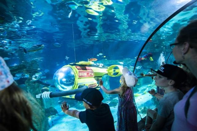 Även här på Legoland finns det akvarium i större format!