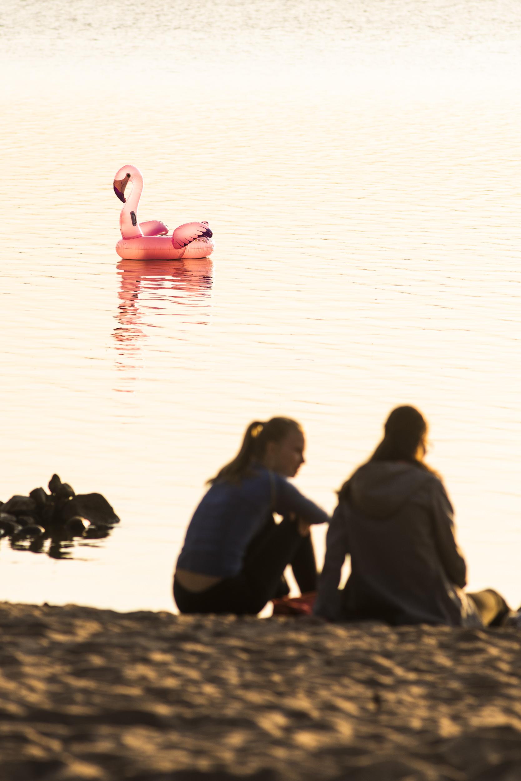 Flamingos var årets tema, fanns överallt. Lite jobbigt för oss fotografer när de stack in huvudena på scenerna.