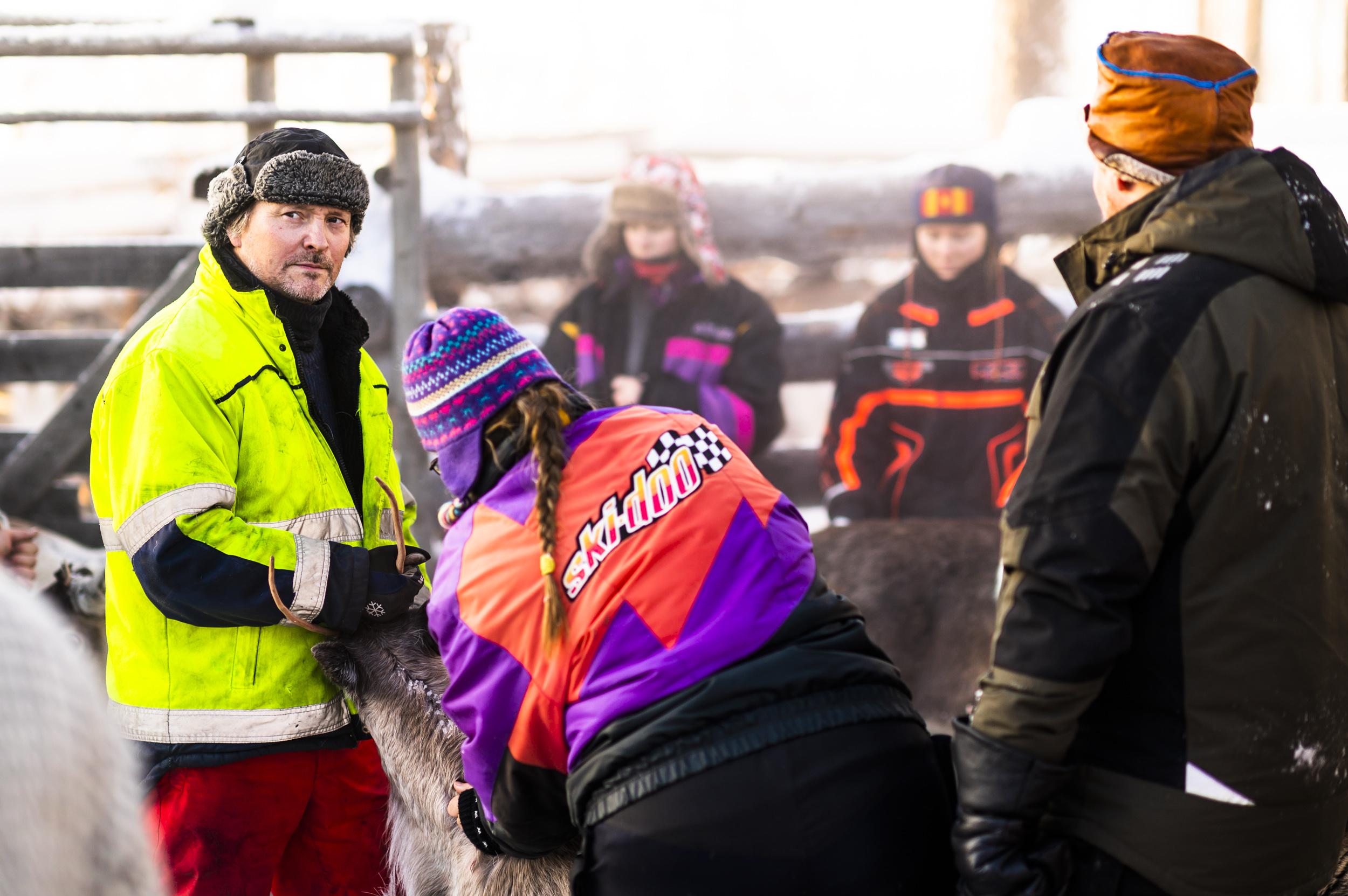 Renskiljning i Norrberg.