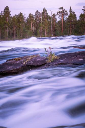 Trollforsarna, en vacker naturupplevelse!