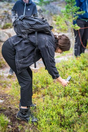 Utflykt till Öngårdsberget. Oerhört mycket blåbär i skogen. Och dåligt med bärplockare i år, typiskt...
