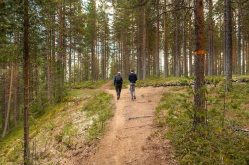 Fin promenadväg mellan Fällfors camping och Marranäsvältan.