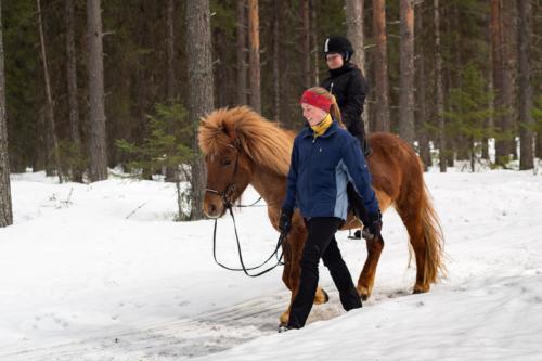 Nikons 50 mm e-lens. Nikon 50 mm e-optik.  Skogspromenad med häst. Svårt att hinna med att fokusera!